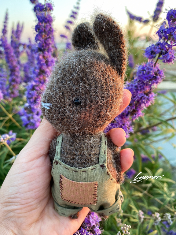 Muni (toxuma dovşan)