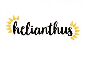 helianthus_az