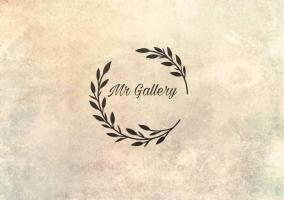 Mr Gallery