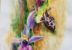 Art_profil_by_ulkar
